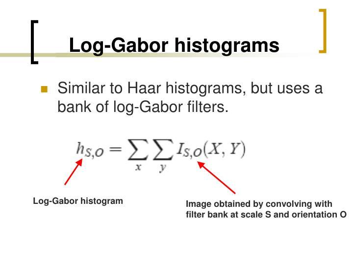 Log-Gabor histograms
