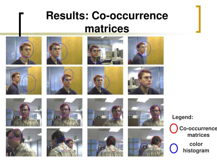 Results: Co-occurrence matrices