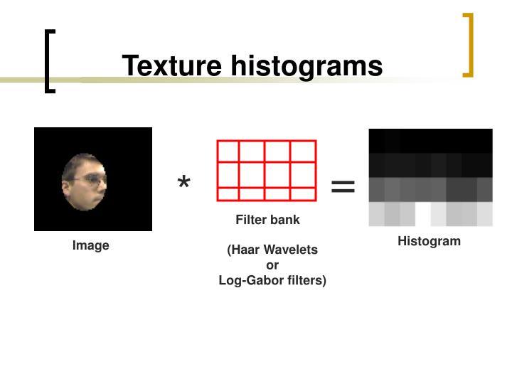 Texture histograms