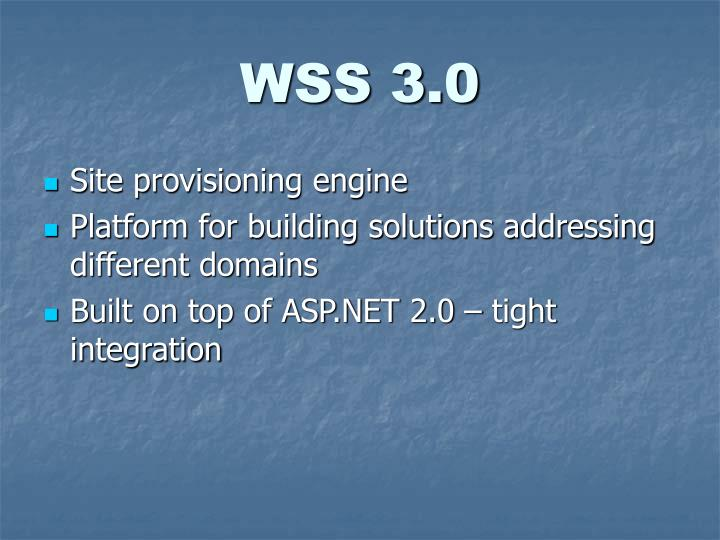 WSS 3.0