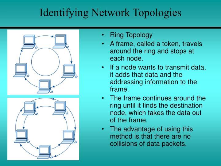 Identifying Network Topologies