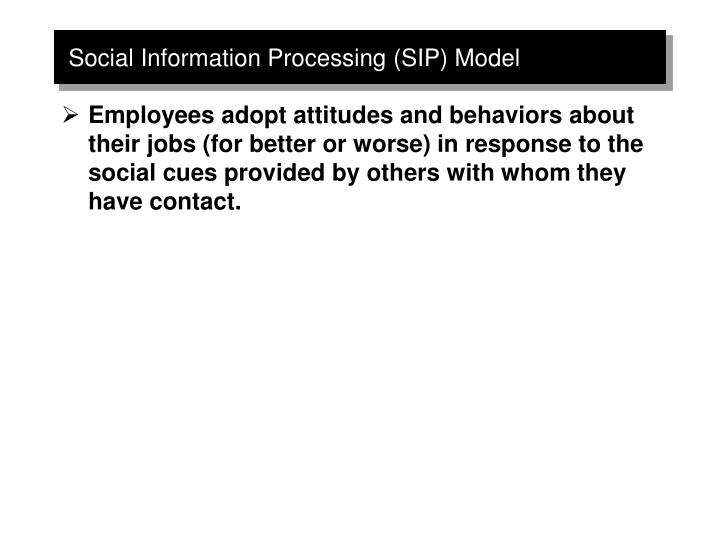 Social Information Processing (SIP) Model