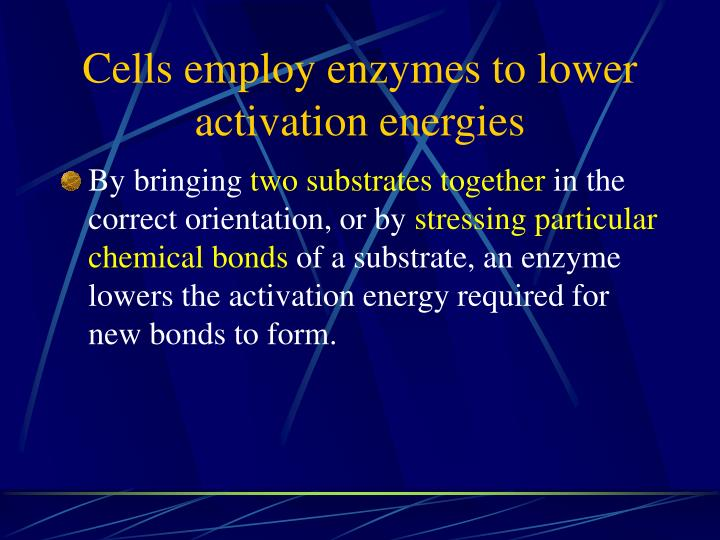 Cells employ enzymes to lower activation energies