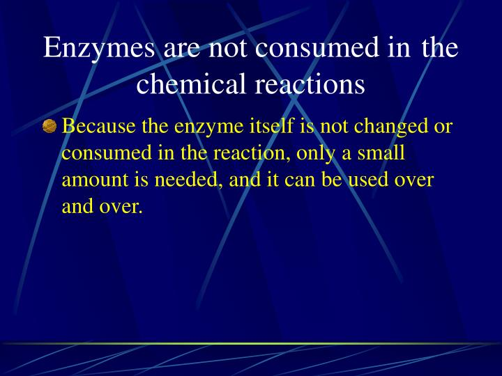 Enzymes are not consumed in