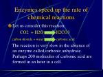 enzymes speed up the rate of chemical reactions