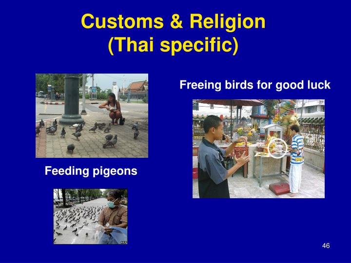 Customs & Religion