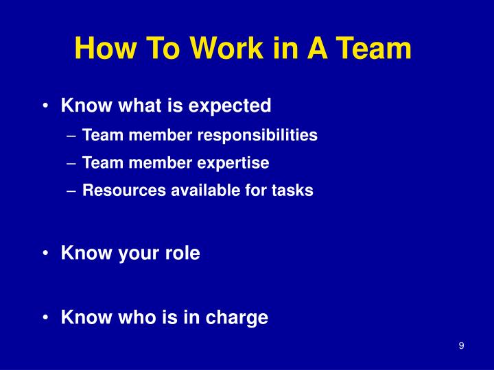 How To Work in A Team