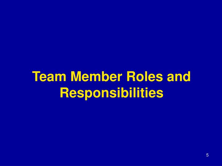 Team Member Roles and Responsibilities