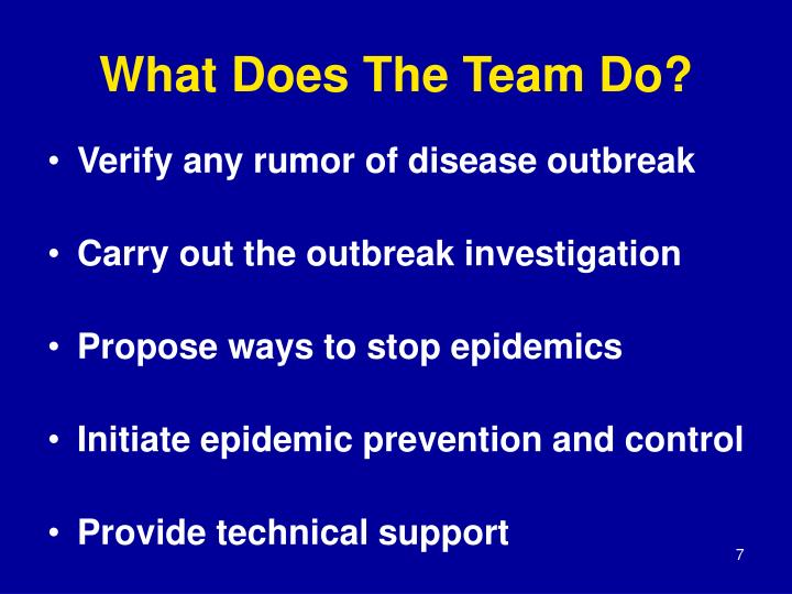 What Does The Team Do?