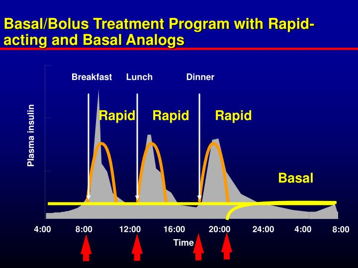 Basal/Bolus Treatment Program with Rapid-acting and Basal Analogs