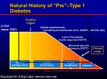 natural history of pre type 1 diabetes