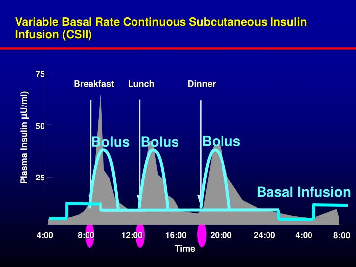 Variable Basal Rate Continuous Subcutaneous Insulin Infusion (CSII)
