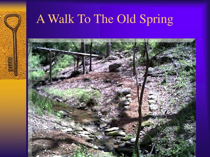 A Walk To The Old Spring