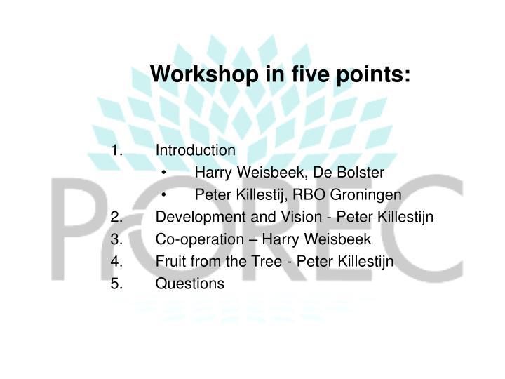 Workshop in five points: