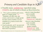 primary and candidate keys in sql