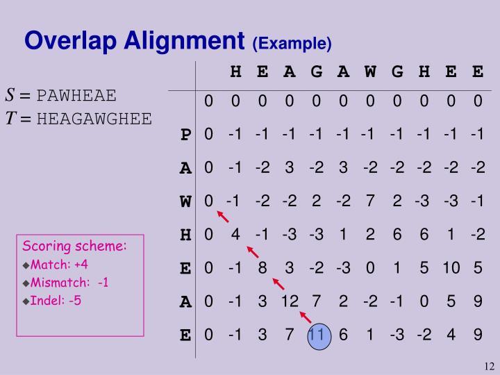 Overlap Alignment