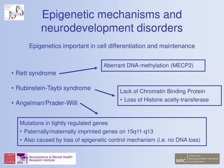 Epigenetic mechanisms and neurodevelopment disorders