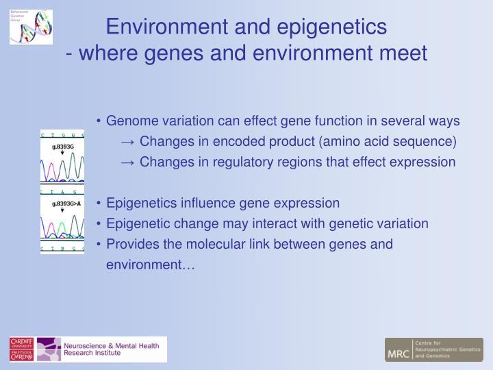 Environment and epigenetics