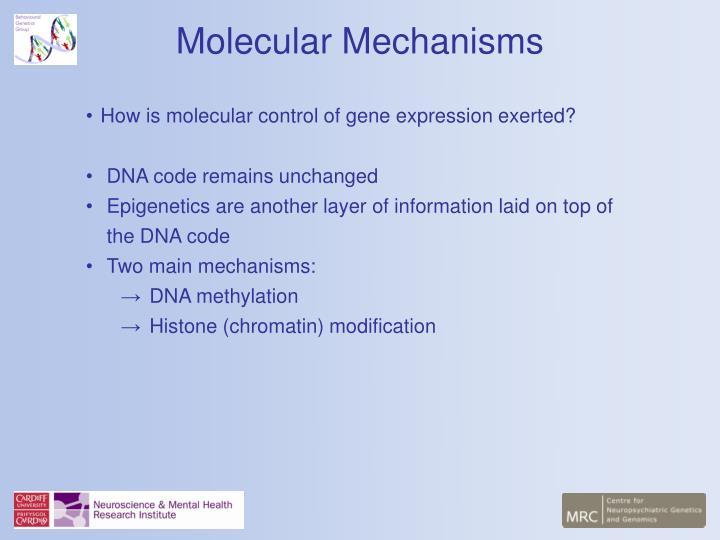 Molecular Mechanisms