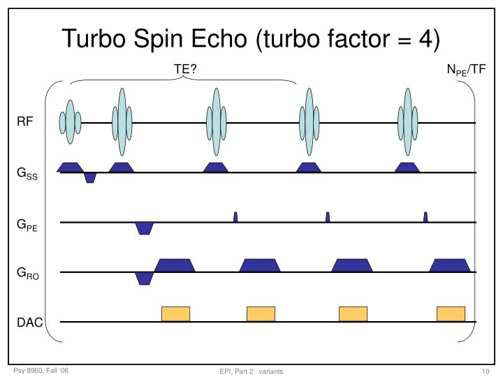 Turbo Spin Echo (turbo factor = 4)