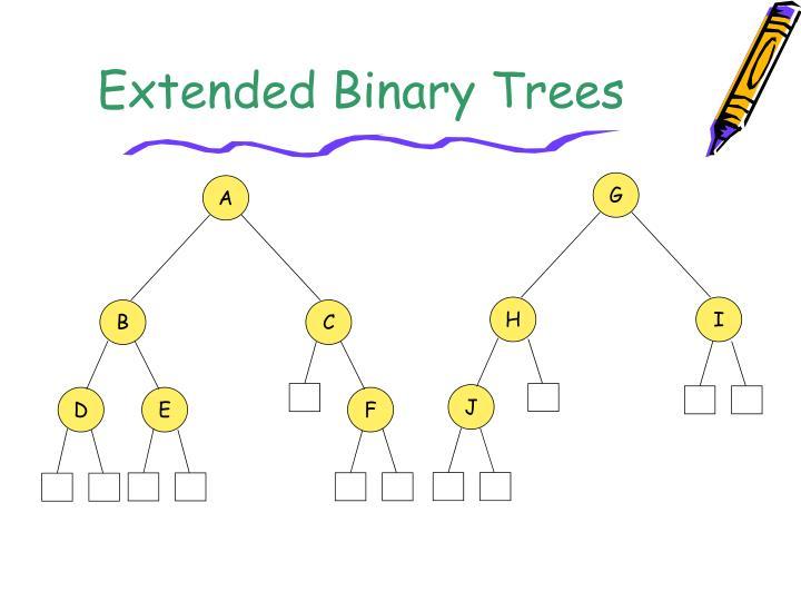 Extended Binary Trees