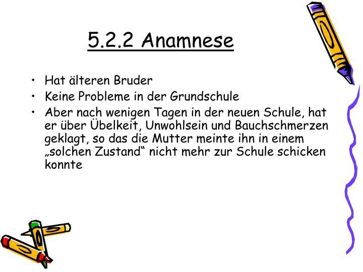 5.2.2 Anamnese