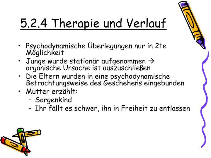5.2.4 Therapie und Verlauf