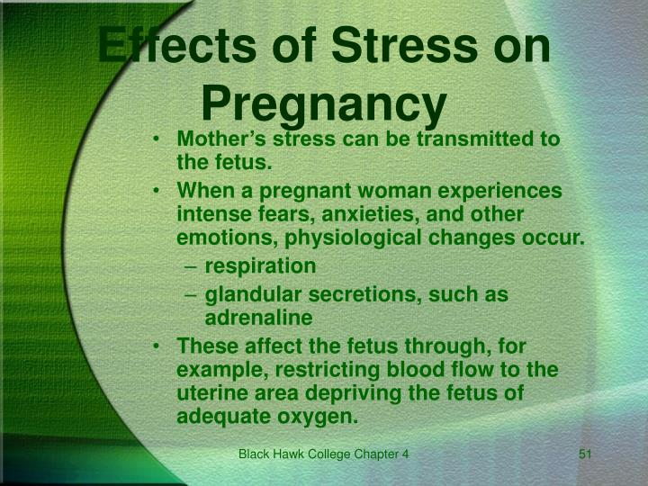 Mother's stress can be transmitted to the fetus.
