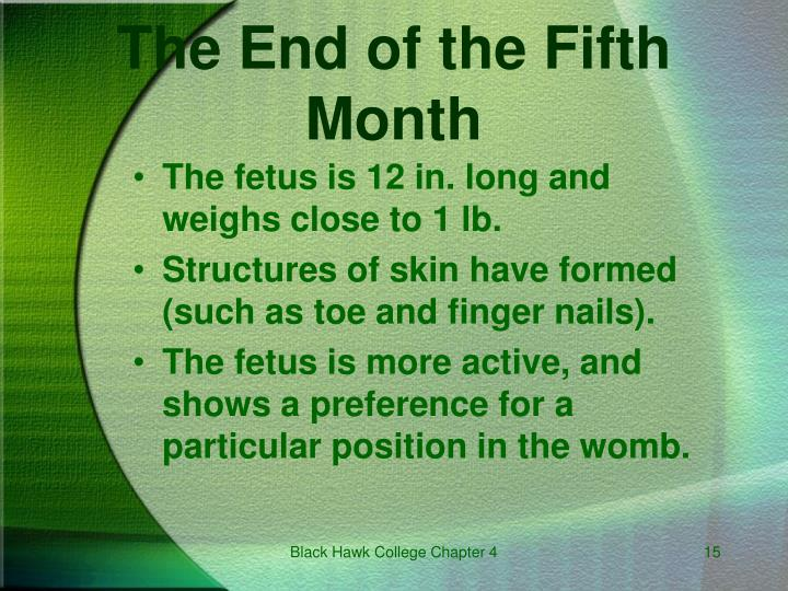 The End of the Fifth Month