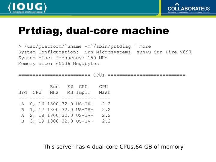Prtdiag, dual-core machine