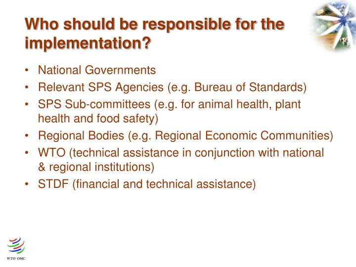 Who should be responsible for the implementation?