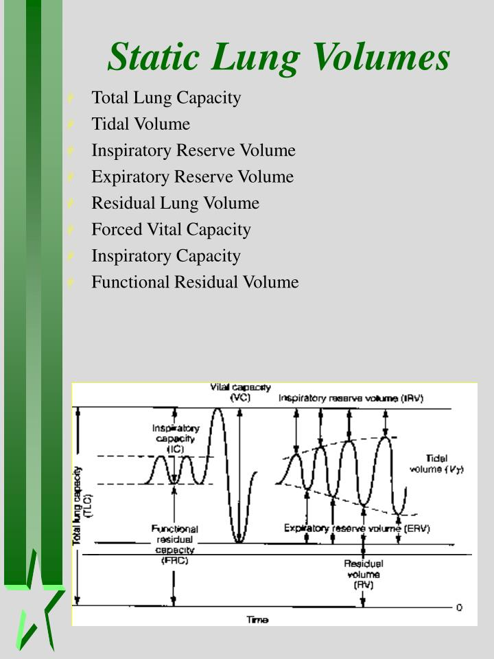 Static Lung Volumes