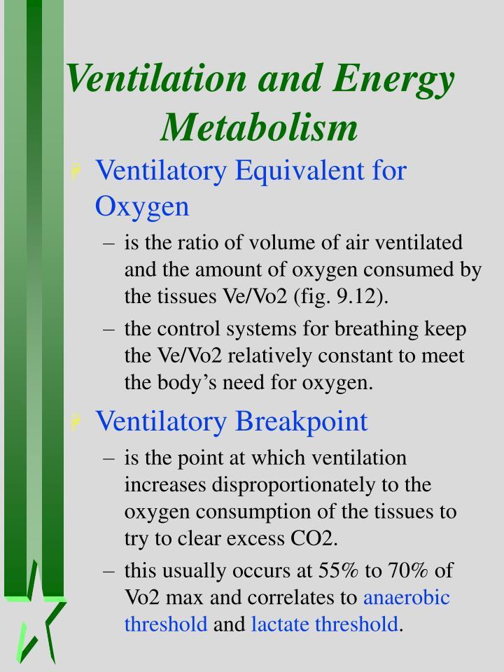Ventilation and Energy Metabolism