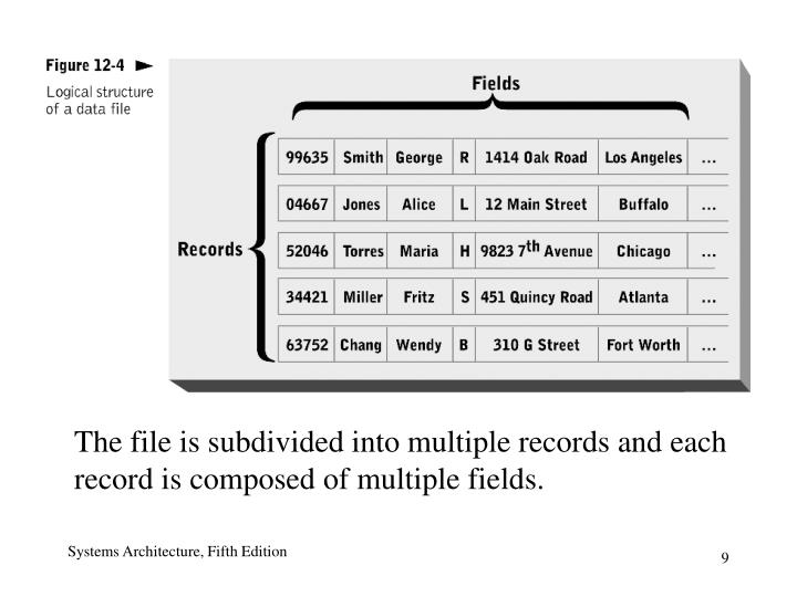 The file is subdivided into multiple records and each  record is composed of multiple fields.