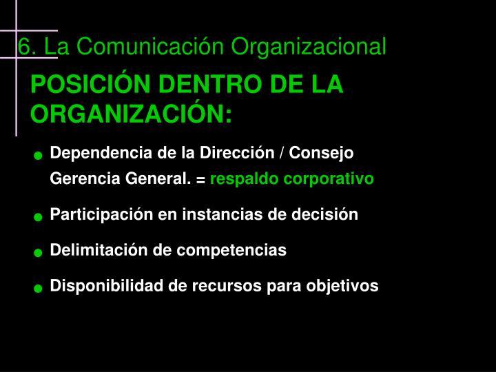 POSICIÓN DENTRO DE LA ORGANIZACIÓN: