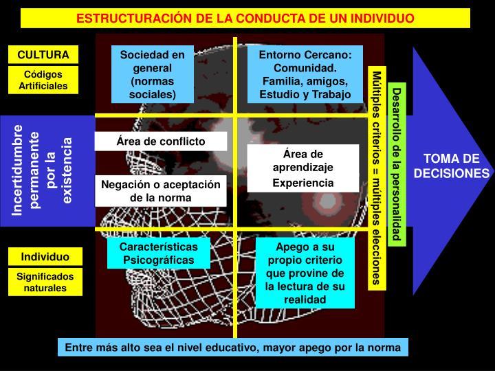 ESTRUCTURACIÓN DE LA CONDUCTA DE UN INDIVIDUO