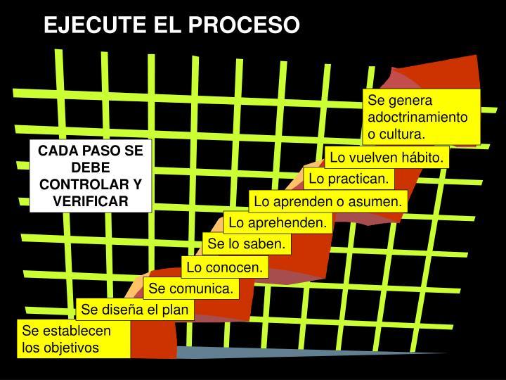 EJECUTE EL PROCESO