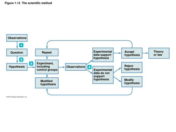 Figure 1.13  The scientific method