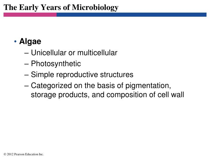 The Early Years of Microbiology