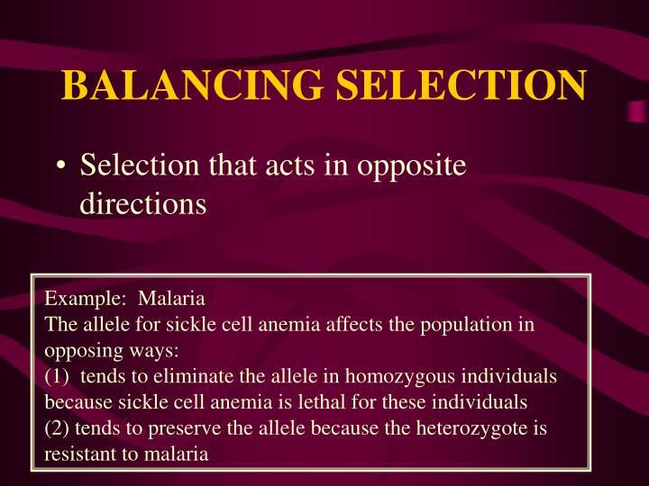 BALANCING SELECTION
