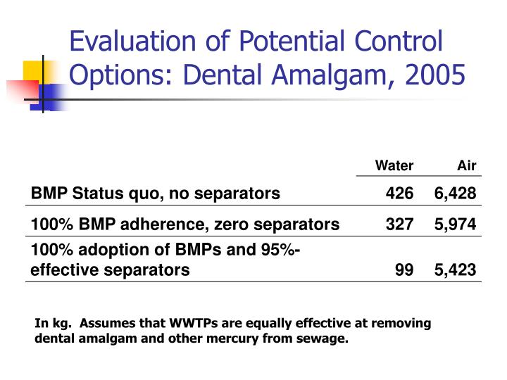 Evaluation of Potential Control Options: Dental Amalgam, 2005
