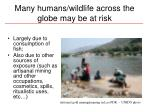 many humans wildlife across the globe may be at risk