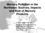 mercury pollution in the northeast sources impacts and role of mercury products