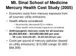 mt sinai school of medicine mercury health cost study 2005