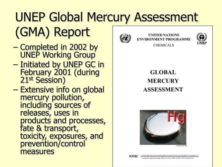UNEP Global Mercury Assessment (GMA) Report