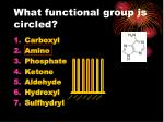 what functional group is circled1