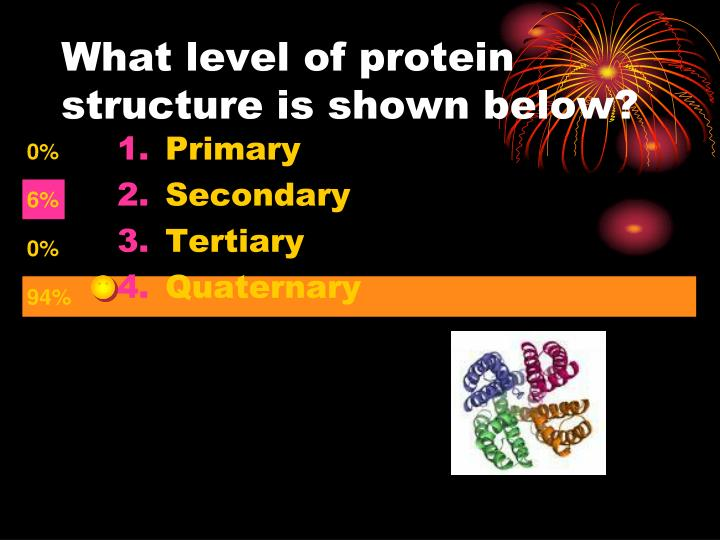 What level of protein structure is shown below?