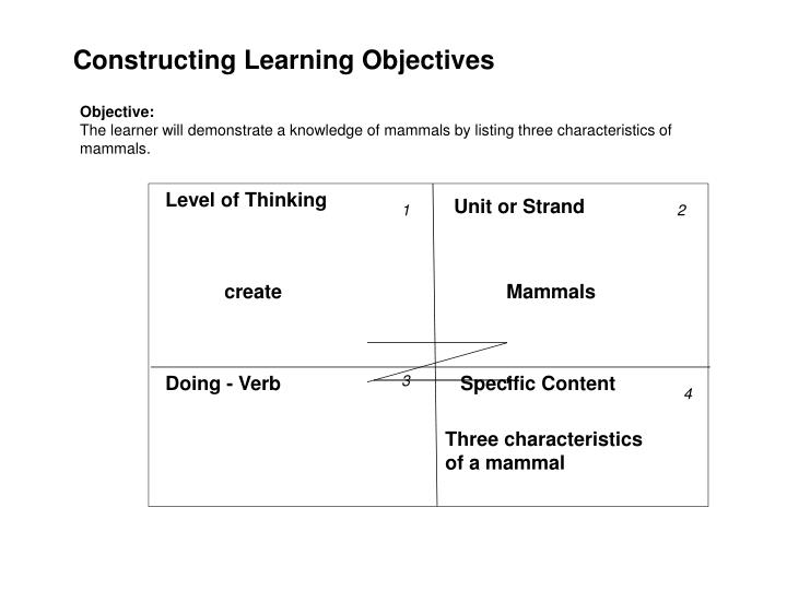 Constructing Learning Objectives