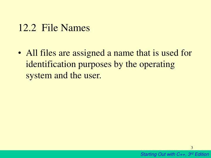 12.2  File Names