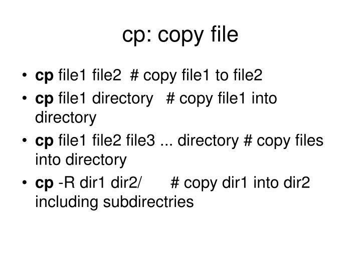 cp: copy file